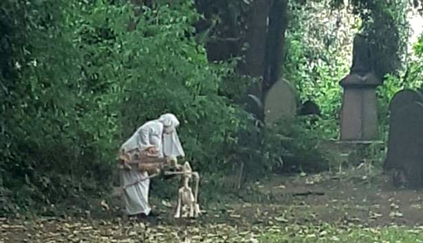 Woman with dog skeleton